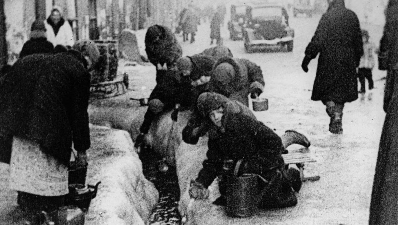 בקור, בצמא וברעב: הזיכרונות של סוניה מהמצור הנאצי על לנינגרד