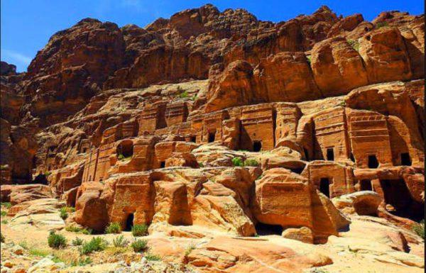 """רחל סבוראי : מהפלמ""""ח לסלע האדום ובחזרה לרפת ולחקר התנ""""ך"""